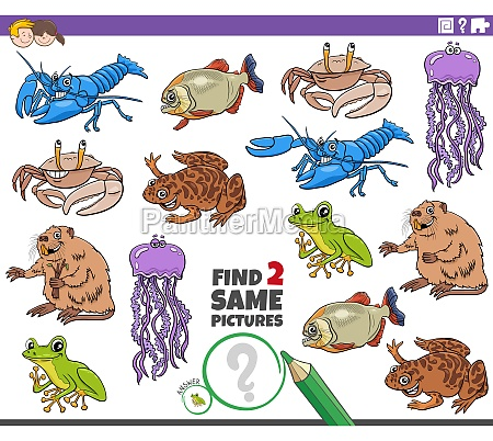 find two same cartoon animals educational