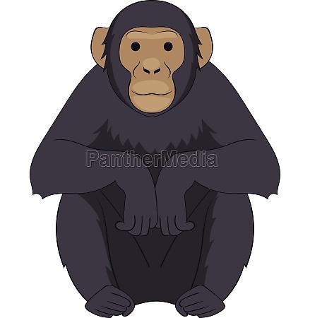 chimpanzee icon cartoon style