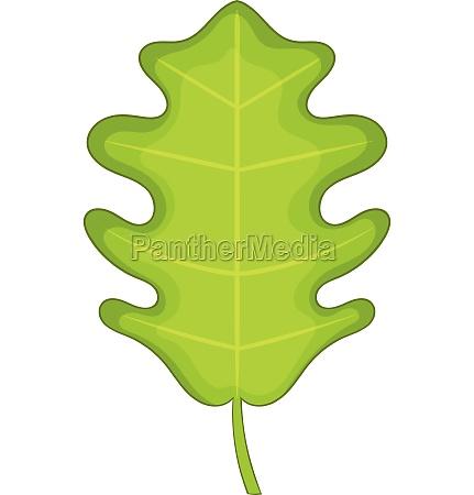 oak leaf icon cartoon style