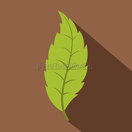 narrow toothed green leaf icon flat