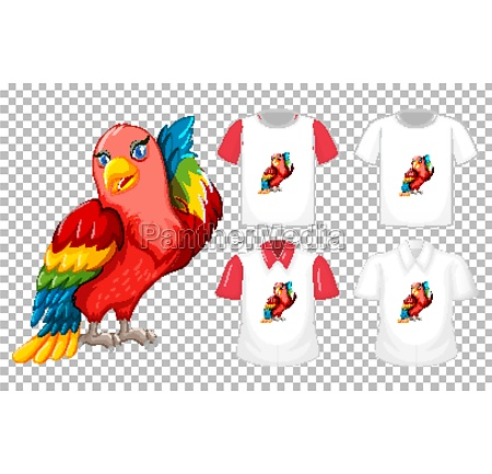 set of different shirts with parrot