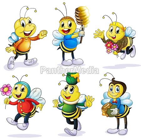 various bees