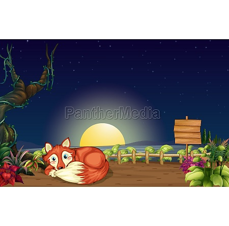 a fox inside the wooden fence