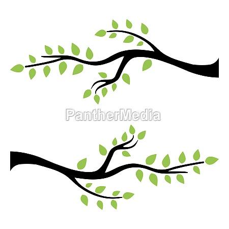 tree branch vector ilustration design