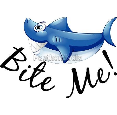 blue shark and phrase bite me