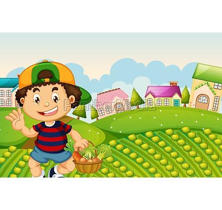 a boy harvest vegetabe