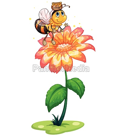 a bee with a pot of