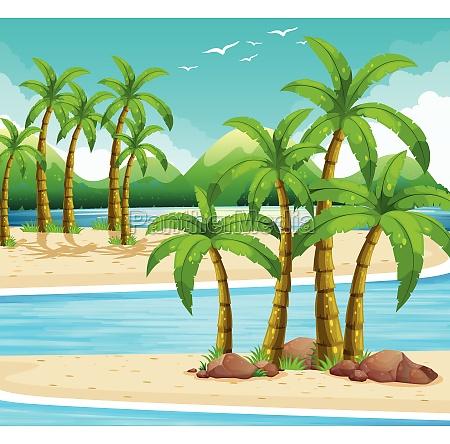 beach view at daytime