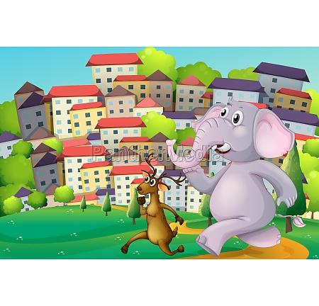 a deer and an elephant running