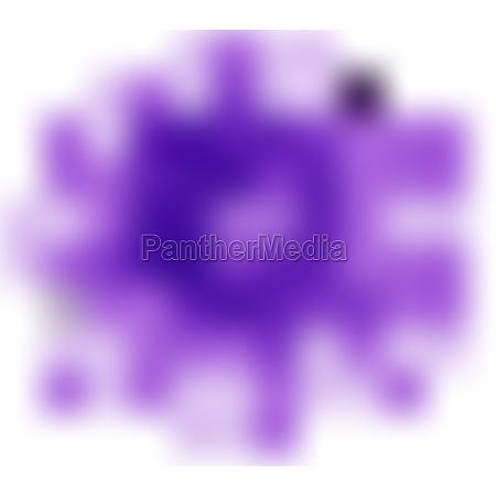 single flower in purple color