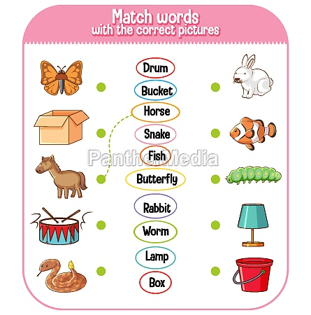 match words with the correct pictures