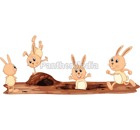a set of cute rabbit