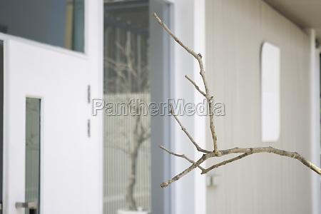 minimal outdoors garden white color exterior