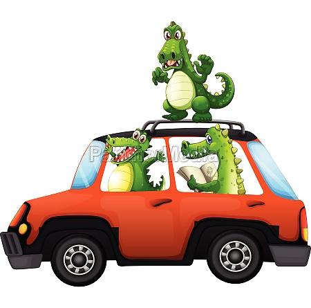 crocodile travel by car