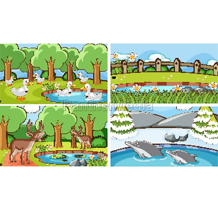 background scenes of animals in the