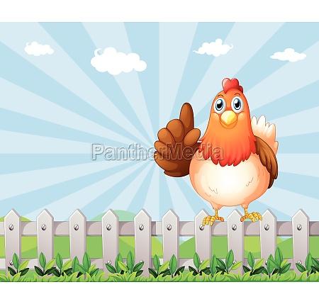 a big fat hen above the