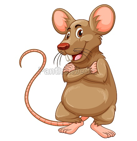 mouse with brown fur