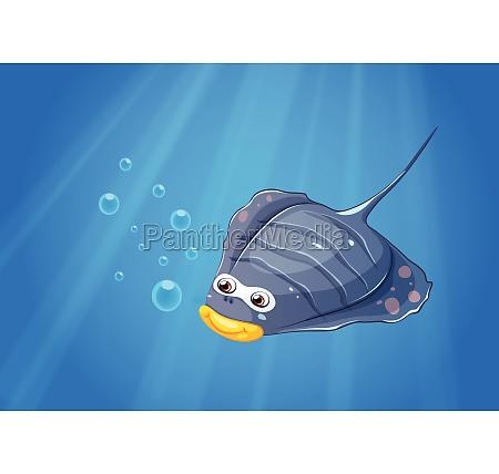 a manta ray under the sea
