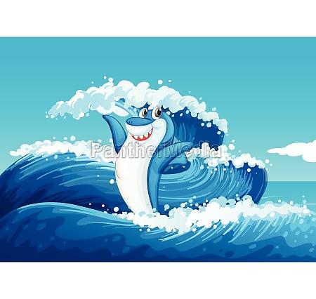 a blue shark and the sea