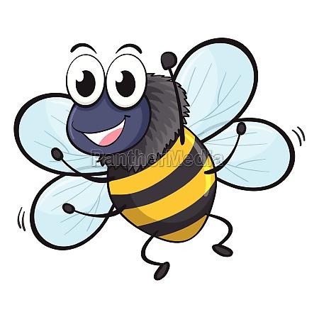 a, bee - 30495442
