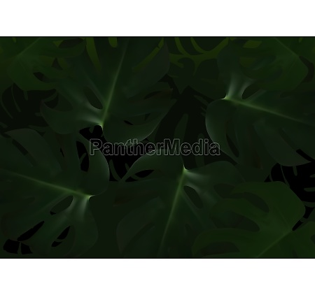 dark background with tropical leafs