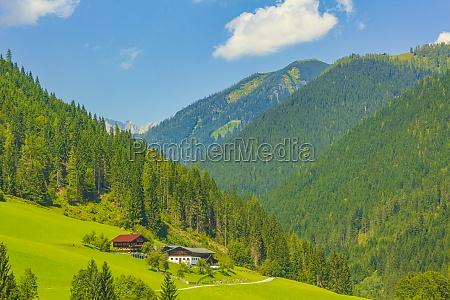 wonderful wooded mountain alpine panorama with