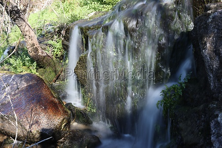 forest nature landscape trees boils waterfall