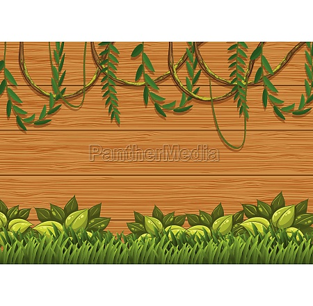 beautiful green nature on wooden board