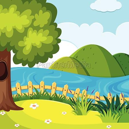 a nature hill landscape