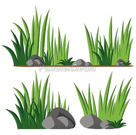 gardening theme with seamless grass