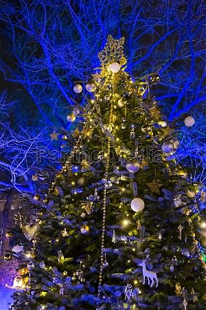 christmas tree in vienna austria