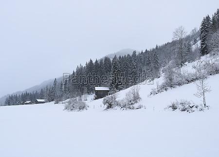 rural winter background