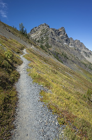 path on a hillside on the