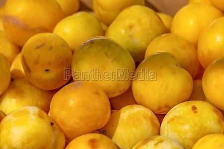 organic fruit street market