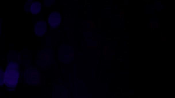 Video B127964168