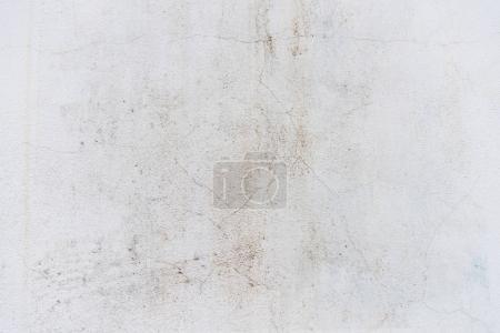 Media-id B169715272