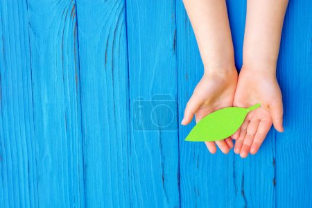 green image background paper bright business