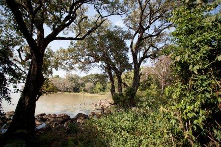 background, season, travel, freedom, nature, outdoor - B368938074