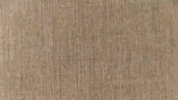 Video B190136954