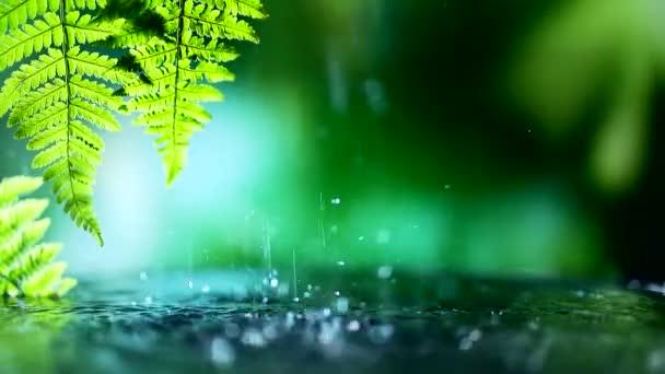 green background macro beautiful closeup reflection
