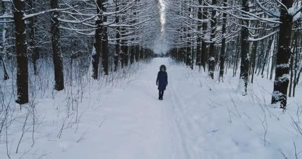 white beautiful day path season girl