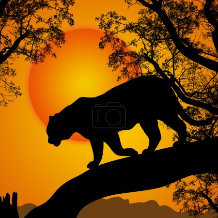 color, vector, on, view, graphic, illustration - B28620469