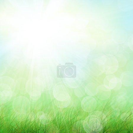 Media-id B32171805