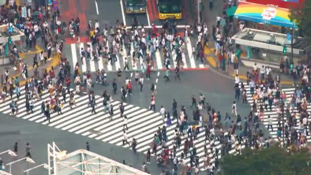 view travel people road traffic modern