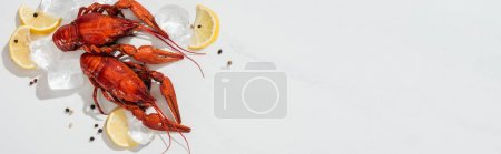Media-id B273639972