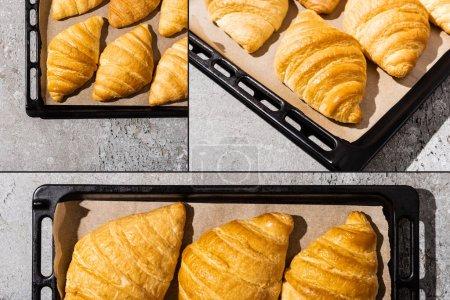 background, nobody, fresh, morning, texture, food - B381226074