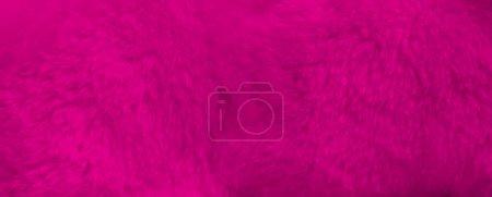 color background colorful vibrant horizontal macro