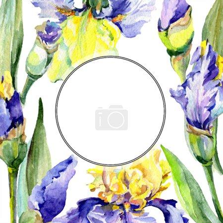 yellow, round, background, illustration, set, isolated - B232248034