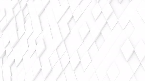 Video B273831274