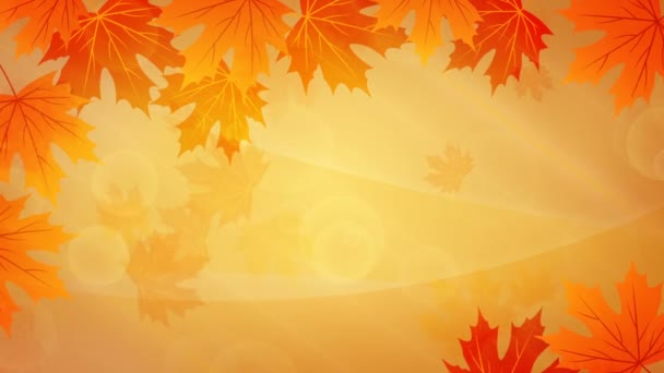 yellow background colorful season nature leaf